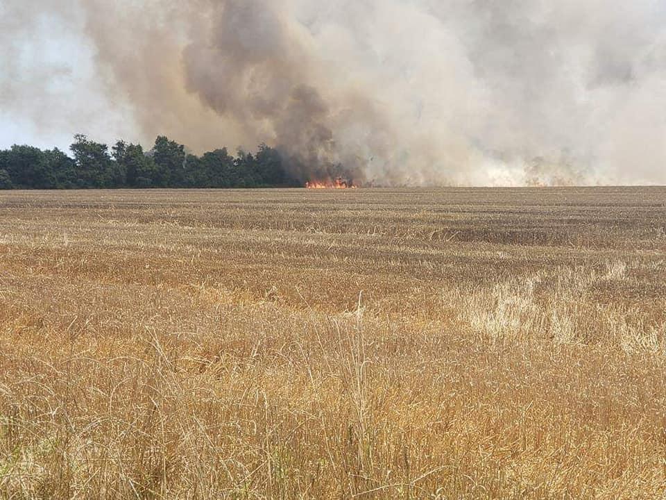 Large Wheat Grain Field on Fire